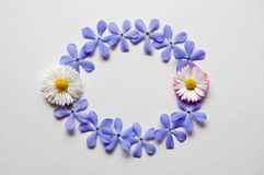 Patroon van bloemen Royalty-vrije Stock Foto's