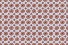 Patroon van bloemen in roze kwart gallons en sereniteits blauwe kleuren Stock Foto's