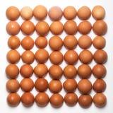 Patroon van bruine eieren op witte achtergrond wordt gemaakt die Het concept van het voedsel Stock Afbeeldingen