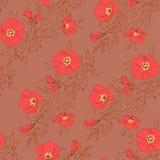 Patroon van de Boho het elegante hond ros Royalty-vrije Stock Afbeeldingen