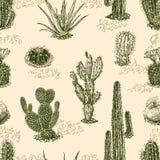 Patroon van de cactus Stock Foto's