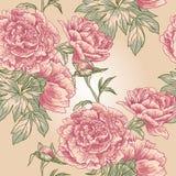 Patroon van de elegantie het Naadloze pioen Royalty-vrije Stock Afbeelding