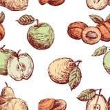 Patroon van de getrokken appelen, de peren en de perziken Stock Foto