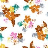 Patroon van de Hibiscus Stock Afbeelding
