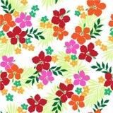 Patroon van de Hibiscus Royalty-vrije Stock Foto's