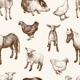 Patroon van de landbouwbedrijfdieren Royalty-vrije Stock Afbeelding
