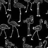 Patroon van de troep van de getrokken flamingo's Stock Foto