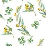 Patroon van de waterverf het groene olijf Olive Branches Stock Afbeelding