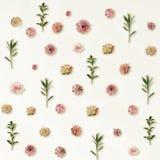 Patroon van de Zomer Roze Bloemen en Groene Bladeren op Licht wordt gemaakt dat Royalty-vrije Stock Foto's