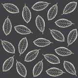 Patroon van droge bladeren Royalty-vrije Stock Foto's
