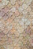 Patroon van een droog blad Stock Afbeeldingen