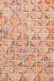 Patroon van een droog blad Royalty-vrije Stock Afbeeldingen