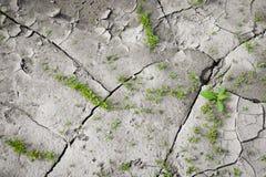 Patroon van een foto gebarsten aarde wordt gecreeerd die Droog weer, droogte Royalty-vrije Stock Afbeeldingen