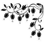 Patroon van een klimplant Royalty-vrije Stock Afbeelding