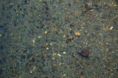 Patroon van een rivierbed stock foto