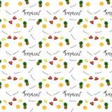 Patroon van fruitsinaasappel, citroen, ananas, ily watermeloen royalty-vrije illustratie