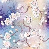Patroon van Kersenbloesem Stock Afbeelding