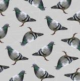 Patroon van Lage polyduifvogel op grijze achtergrond, dierlijk geometrisch concept, Abstracte vector stock afbeelding