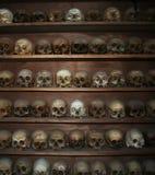 Patroon van menselijke schedels Royalty-vrije Stock Afbeeldingen