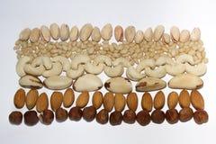 Patroon van noten op witte achtergrond Stock Foto