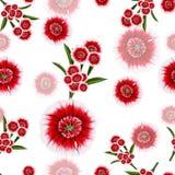 Patroon van rode en witte bloemen Stock Fotografie