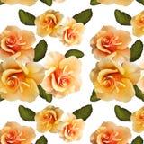 Patroon van rozen op een witte achtergrond stock illustratie
