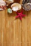 Patroon van shells op een houten oppervlakte royalty-vrije stock afbeeldingen