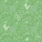Patroon van tomatentak in een tuin Groen en wit Royalty-vrije Stock Fotografie