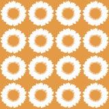 Patroon van zonnebloemen Royalty-vrije Stock Afbeelding