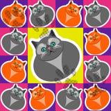 Patroon vectorkatten Stock Fotografie
