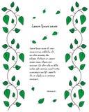 Patroonpamflet met takken en groene bladeren Royalty-vrije Stock Fotografie
