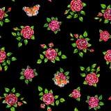 Patroszone czerwone róże z pawich motyli bezszwowym tłem Kwitnie ilustracyjnego frontowego widok Handwork porad piórami wzór Fotografia Stock