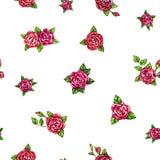 Patroszony czerwonych róż bezszwowy tło Kwitnie ilustracyjnego frontowego widok Handwork porad piórami Zdjęcie Royalty Free