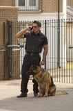 Patrouille met hond royalty-vrije stock foto's