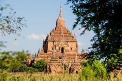 Patrzeć na pagodzie przez drzew Zdjęcia Royalty Free