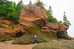 Patrzejący pływowe skały przy niskim przypływem Obrazy Royalty Free