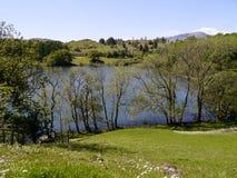 Patrzejący w dół na Loughrigg Tarn, Jeziorny okręg obraz royalty free