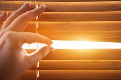 Patrzejący przez nadokiennych stor inside, słońca lekki przybycie Zdjęcia Royalty Free