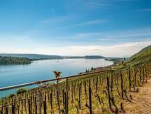 Patrzeje nad winogradami jezioro z małym kościół obraz royalty free