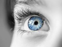 patrzeje niebieskie oko chłopiec obrazy stock