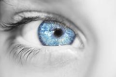 patrzeje niebieskie oko chłopiec Zdjęcie Stock