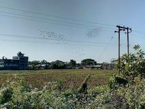 Patsala miasteczko, Assam, ind zdjęcie stock