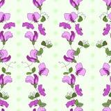 Patt sans couture de vecteur de style vertical de fleurs et de feuilles de pois doux illustration de vecteur