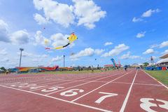 Pattani - MARCH 9- Many Fantasy kites in the International Kite. Festival on May 30, 2014 in Rainbow Stadium, Pattani, Thailand Stock Photography
