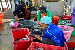 Three Thai women in hijab clean and wash fish at village in Pattani Thailand. Pattani, Thailand - May 9, 2017: Three Thai Muslim women process and clean fresh royalty free stock photography