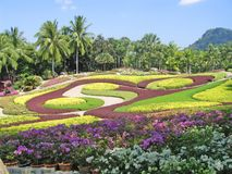 Pattaya. A botanical garden of Nong Nuch Royalty Free Stock Photos