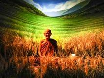 Pattaya Chonburi, Thailand, am 27. Juli 2017: die Wachsfigur des thailändischen ehrwürdigen Mönchs mit dem Reisbaum Lizenzfreies Stockfoto