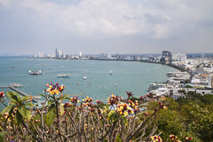 Pattaya City. Stock Images