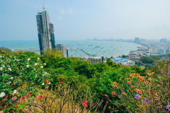 Pattaya 23 March 2016: Royalty Free Stock Photography