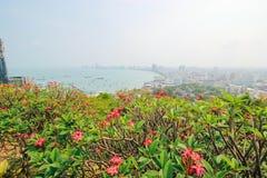 Pattaya 23 mars 2016: Arkivbild